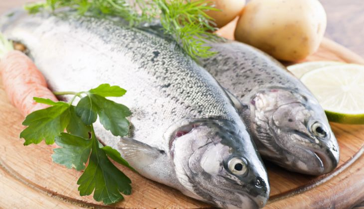 1 Portion Forelle (150 Gramm) liefert immerhin 2,6 Milligramm Vitamin E