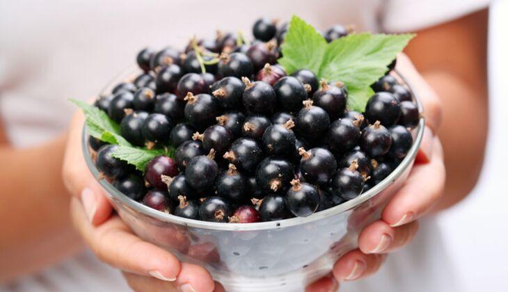1 Portion Schwarze Johannisbeeren (125 Gramm) enthalten rund 2,4 Milligramm Vitamin E