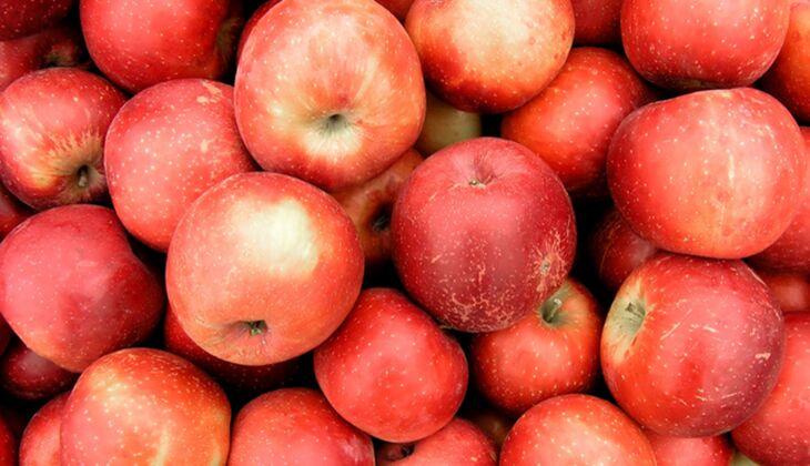 Äpfel allein sind schon ein echtes Powerfood