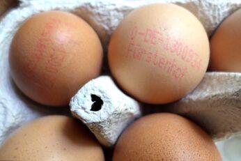 Anhand des Codes auf dem Ei lässt sich die Herkunft ganz leicht bestimmen