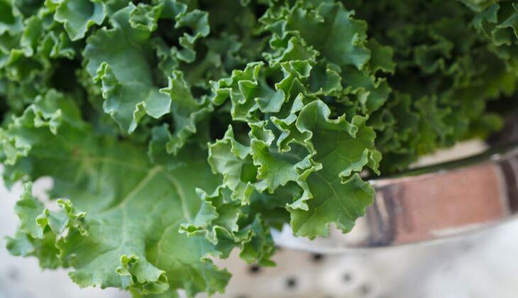 Eine Portion (200 Gramm) Grünkohl liefert 210 Milligramm Vitamin C
