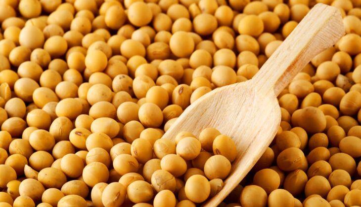 Eine Portion Sojabohnen (Trockenprodukt, 60 Gramm) liefert 150 Mikrogramm Folsäure