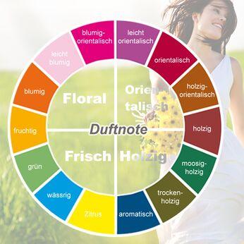 Fragrance Circle - Duftkreis