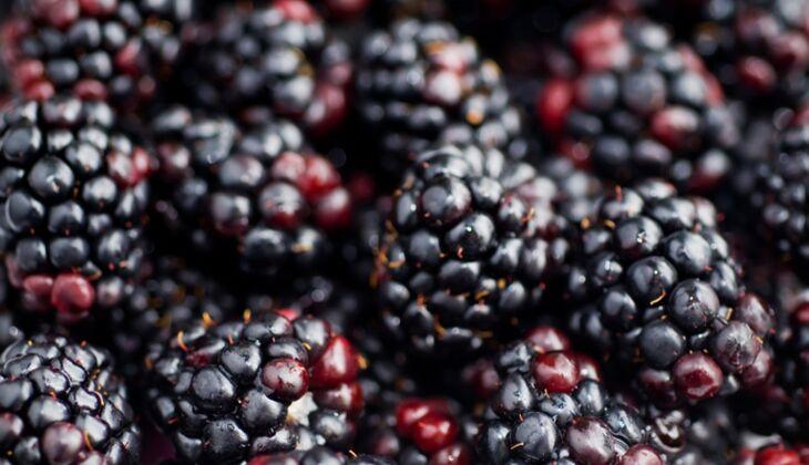 Kalorienarmes Obst: Top 20 mit wenig Kalorien
