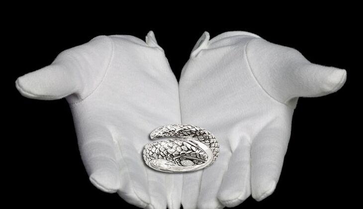 Ring in Schlangen-Form von Thomas Sabo, zirka 98 Euro