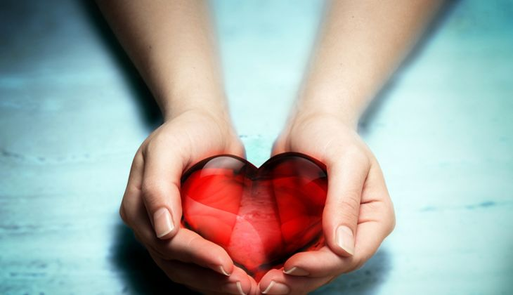 Schädigt Cholesterin das Herz?