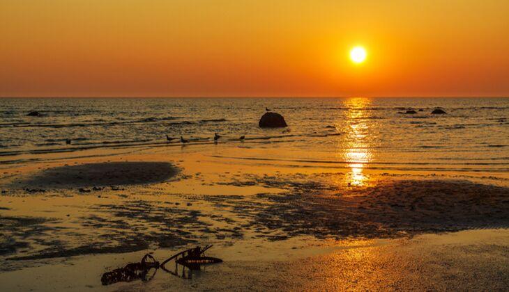 Strand an der Ostsee: Poel