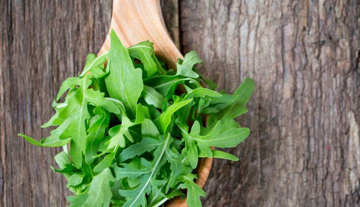 Würziger Rucola-Salat