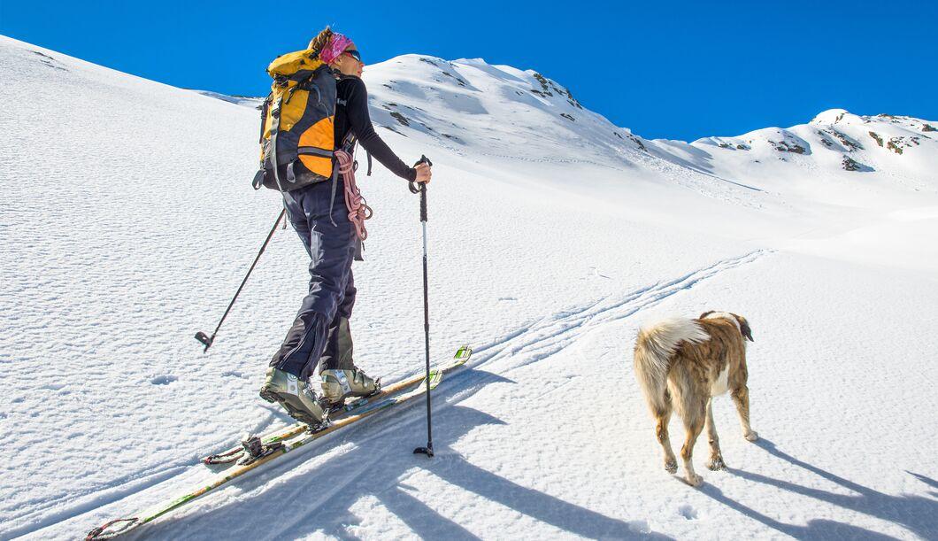 Der österreichische Alpenverein setzt sich für den Naturschutz und für Bergsportbegeisterte ein